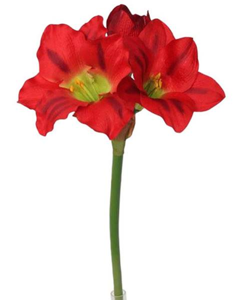 Červená váza Albani